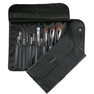 DaVinci 11 Brush Set