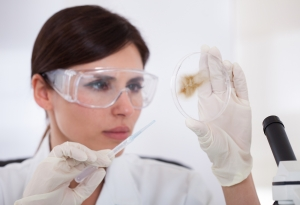 Female Scientist Looking At Petridish